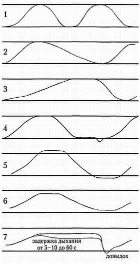 Типы дыхания: