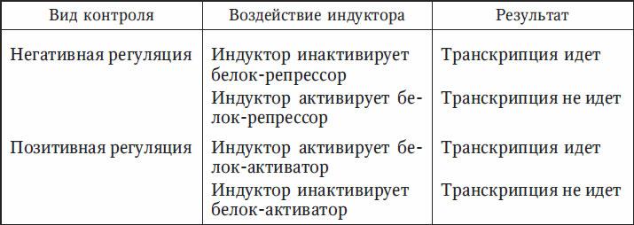6.6. Регуляция экспрессии генов у прокариот