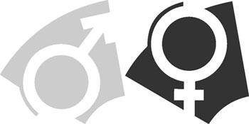 14.4. Некоторые вопросы теории формирования пола