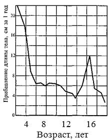Соотношение процессов роста и развития