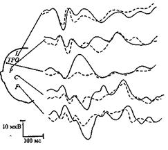Интегративные процессы в центральной нервной системе как основа психических функций