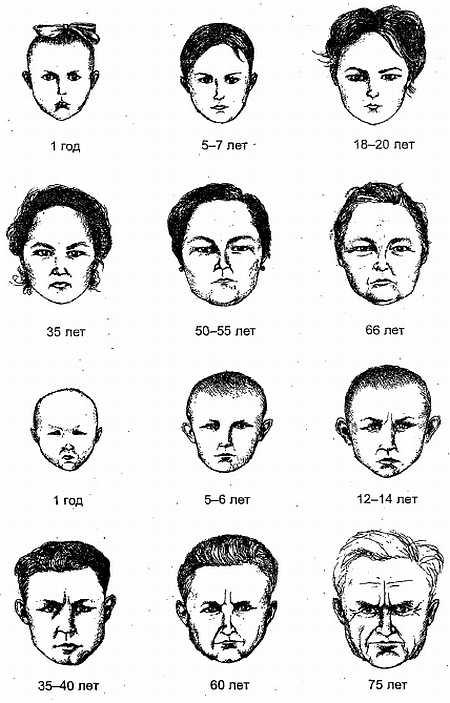 днем характеристика черт лица картинки ещё слишком малы