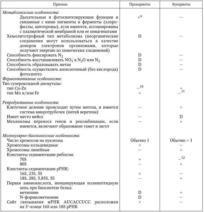 Современная <a href='https://med-tutorial.ru/m-lib/b/book/2239746527/18' target='_self'>классификация бактерий</a>