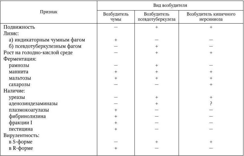 Иерсинии – возбудители псевдотуберкулеза (Y. pseudotuberculosis) и кишечного иерсиниоза (Y. enterocolitica)