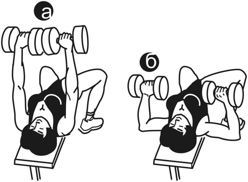 Упражнения на горизонтальной скамье