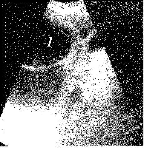 Рис. 8.19.