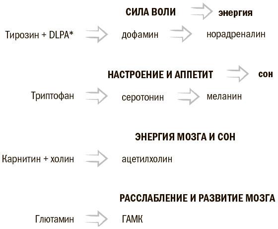 Продукты — предшественники <a href='https://med-tutorial.ru/m-lib/b/book/370023715/31' target='_self'>нейротрансмиттеров</a>
