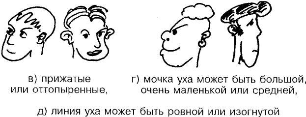 Рот и губы