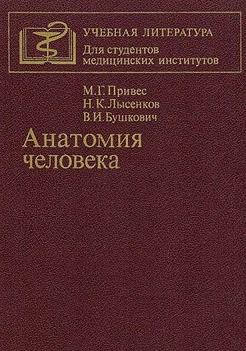 Анатомия человека [9-изд]